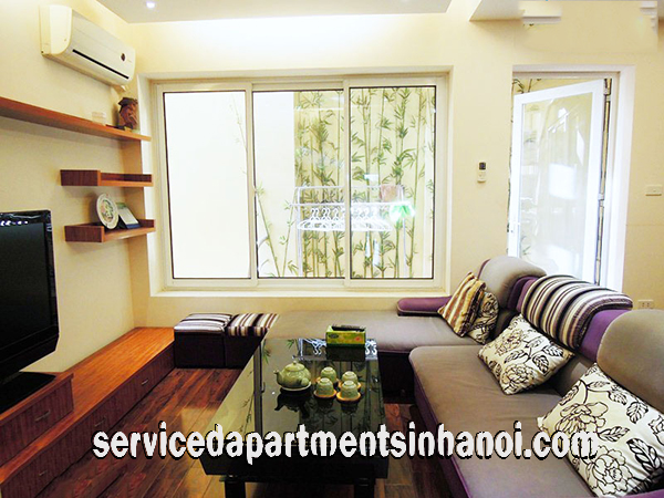 very nice and cheap two bedroom apartment rental in lac long quan