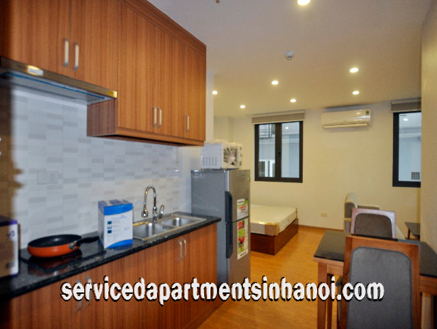Brand New Apartment Rental in Truc Bach Area, Ba Dinh
