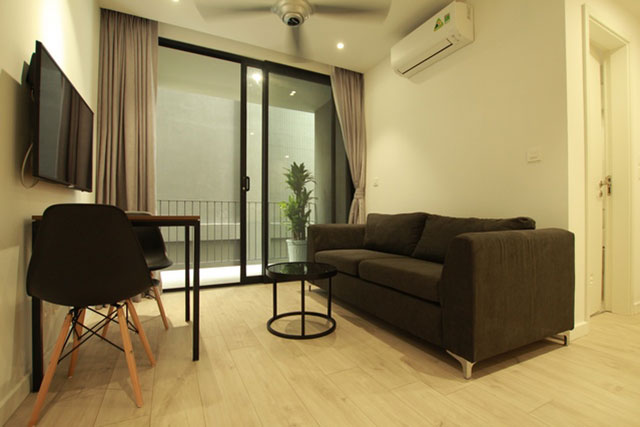 *Central Tay Ho Deluxe Apartment For Rent, Good Price*